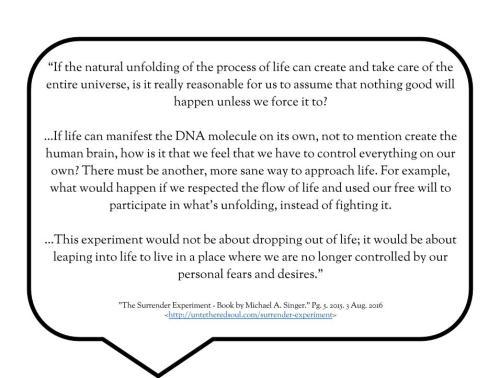 pg 5 - quote